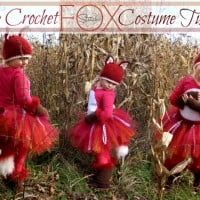 Fox Costume by Stitch11