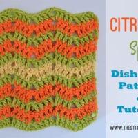 Citrus Splash Dishcloth by The Stitchin' Mommy